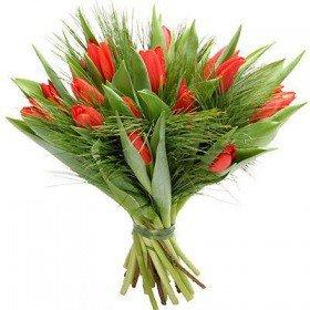 Bukiet 15 Tulipanów Czerwonych Koszalin